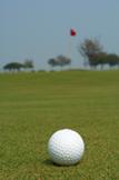 golfBall_web
